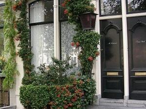 Rose-Hip Apartment