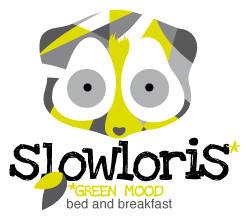 SlowLoris