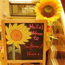 Sunflower's Home Hostel