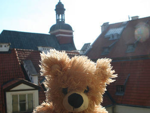Teddy Bear Hostel Riga