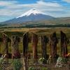 The Secret Garden Cotopaxi