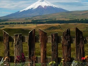 The Secret Garden Cotopaxi