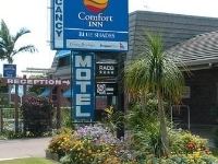 Comfort Inn Blue Shades