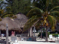 Acamaya Reef Resort
