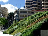 Plaza Tenerife
