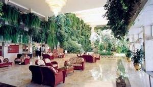 Vulcano Hotel