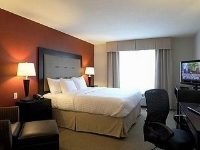 Holiday Inn Hotel Stes Airport