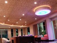 Hotel Indigo San Jose Forum