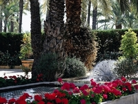 Jardin Del Milenio Hotel