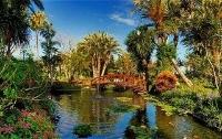 Hotel Botanico