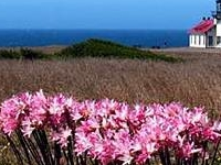 Lighthouse Inn At Point Cabrillo