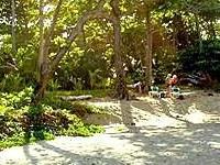 Bohio De Playa