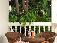 Al Nahda Resort and Spa
