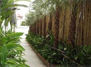 Siam Piman Airport Hotel ,suvarnabhumi Airport Hot