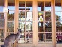 Kangaroo Island Wilderness Retr