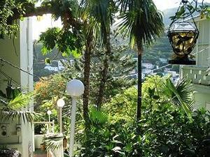 The Green Iguana Hotel