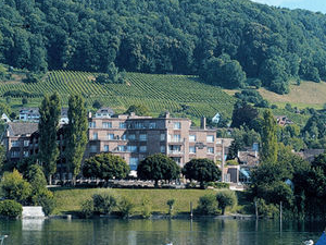 Hotel Chlosterhof Stein Am Rhei