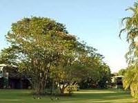 Aurora Kakadu