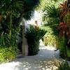Tropical Casa Blanca