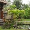 Alam Shanti