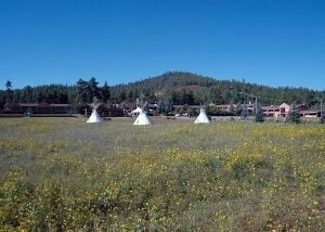 Quality Inn Mountain Ranch And