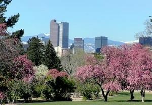 Residence Denver Downtown