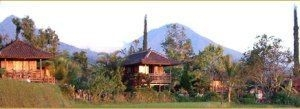 Puri Lumbung Cottages
