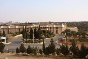 Dedeman Palmyra
