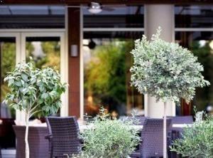 Ajax Hotel Limassol