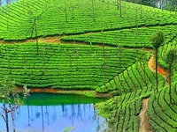 All Kerala Taxi Affordable Taxi Tour Packages in Kerala