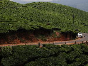 Kerala Winter Holidays Photos