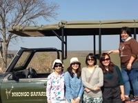 Bushveld Safari