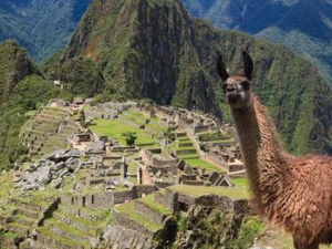Machu Picchu by Train Full Day Photos