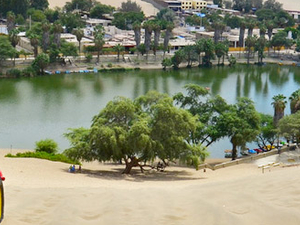 Full Day Ica, Huacachina, Ballestas Islands