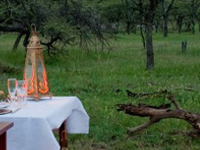 12 Days Kenya And Tanzania Honeymoon Safari 1