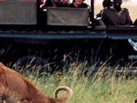 Kenya - Tanzania Classic Safari