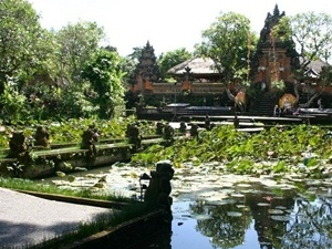 Bali Bird Park & Ubud Tour Packages