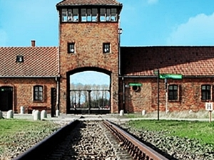 Auschwitz - Birkenau Tour from Krakow