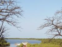 Step in Senegal
