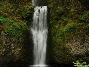 Portland City Tour & Gorge Waterfalls Combo