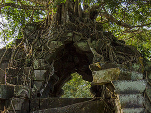Day Trip to Beng Mealea Temple and Kampong Khleang