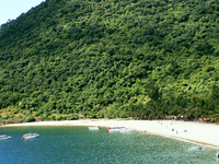 Cham Islands - Snorkeling Tour