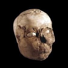Plaster Skull