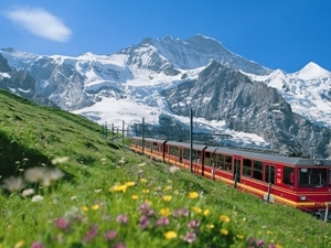 Zermatt to Zurich Tours Photos