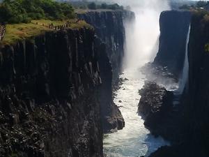 Explore Botswana's Finest Safari Destinations