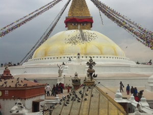 Best of Nepal Tour Fotos