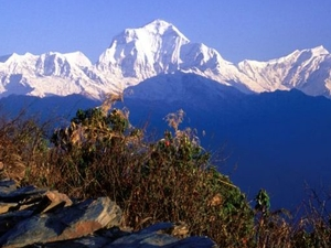 Annapurna Poon Hill Trekking Photos