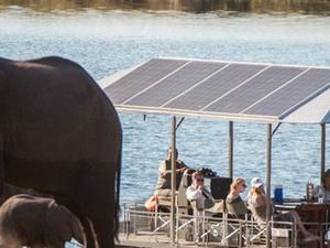 Chobe Day Trip - Botswana Photos