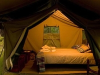 12 DAYS / 11 NIGHTS Tanzania Safari Under Canvas Tented Camps