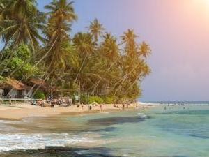 Luxury Tour Through Sri Lanka Photos